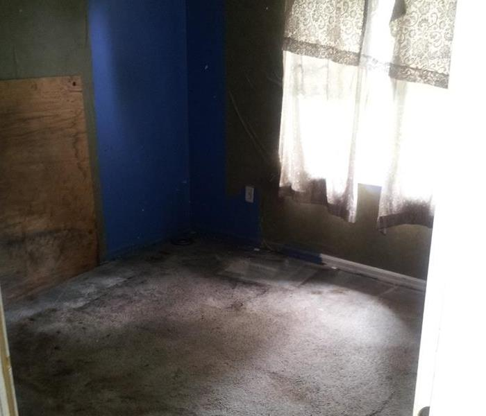 Water and Mold Damage Beverly Beach FL