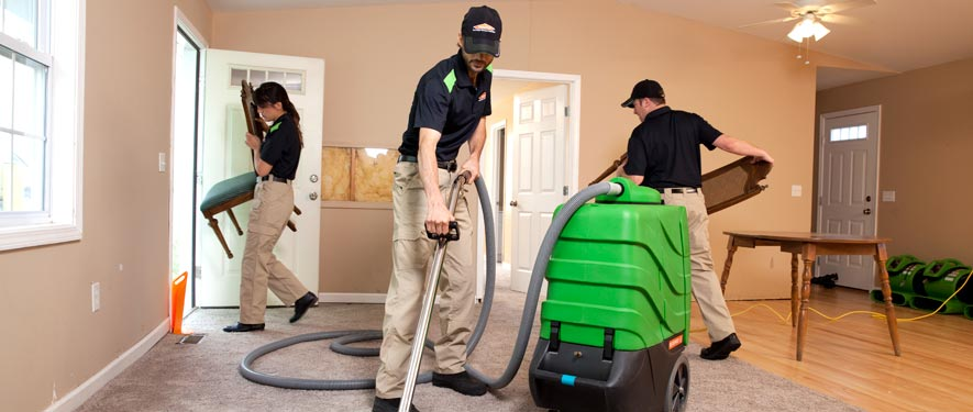 Palm Coast, FL cleaning services